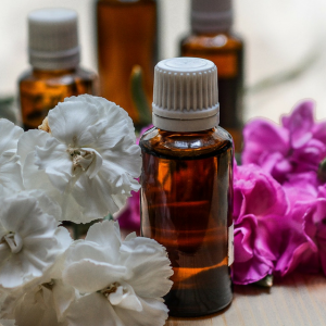 Best Natural Anti-Aging Oils for Skincare